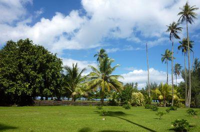 Jardin Botanique à Papeari dans Tahiti Découverte p1010868