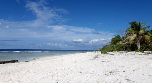 P2210049 dans Archipel des Tuamotu
